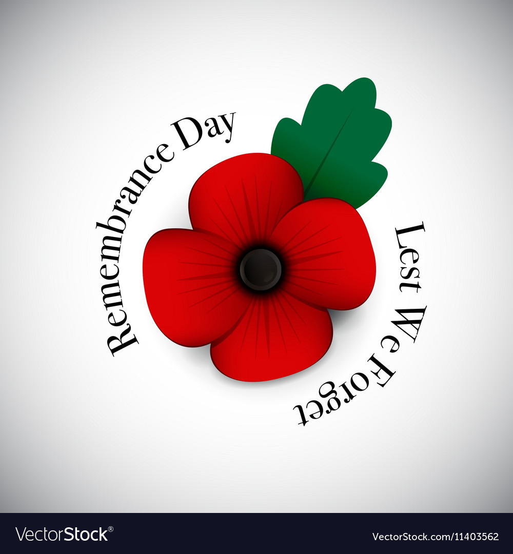 Remembrance day vector image
