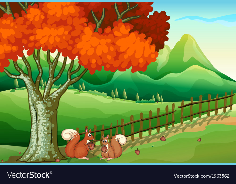 Two squirrels under the big tree vector image