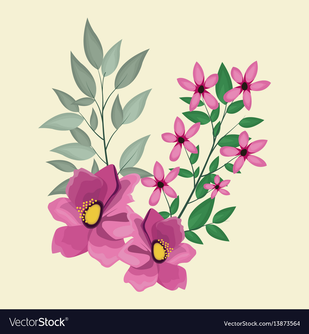 Anemone decoration leaves nature vector image