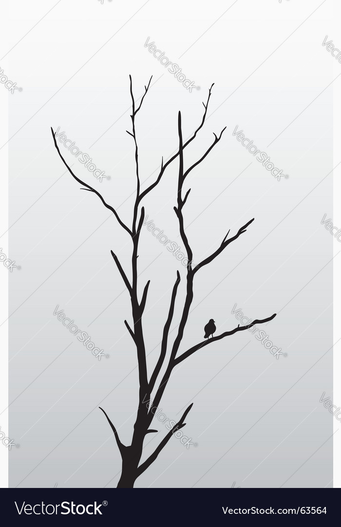 Tree and bird vector image