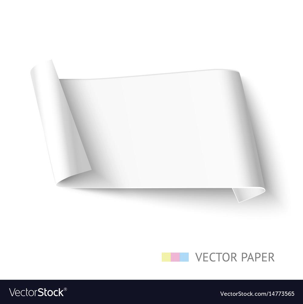 White paper roll long design for web banner vector image