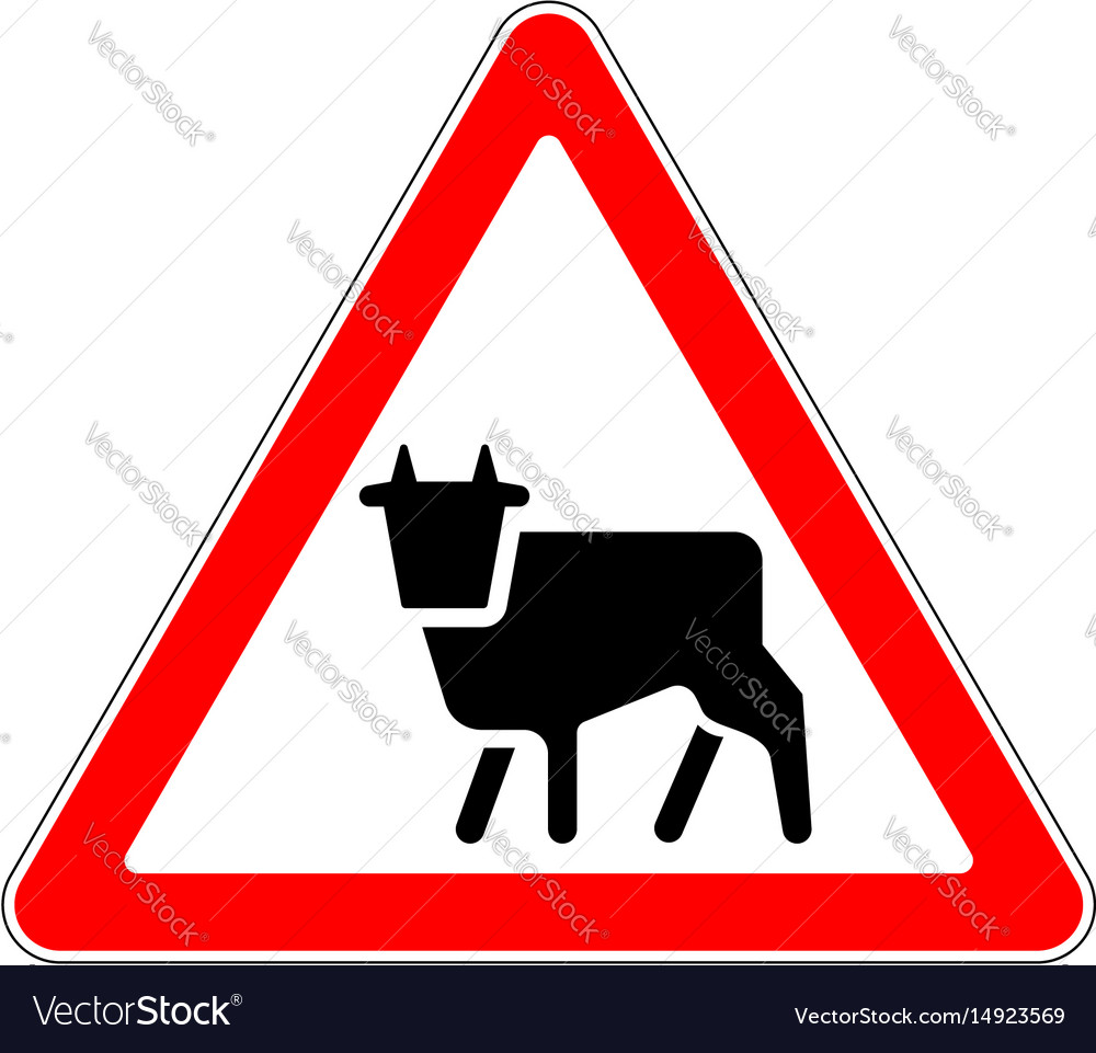 Road sign warning livestock movement on white vector image