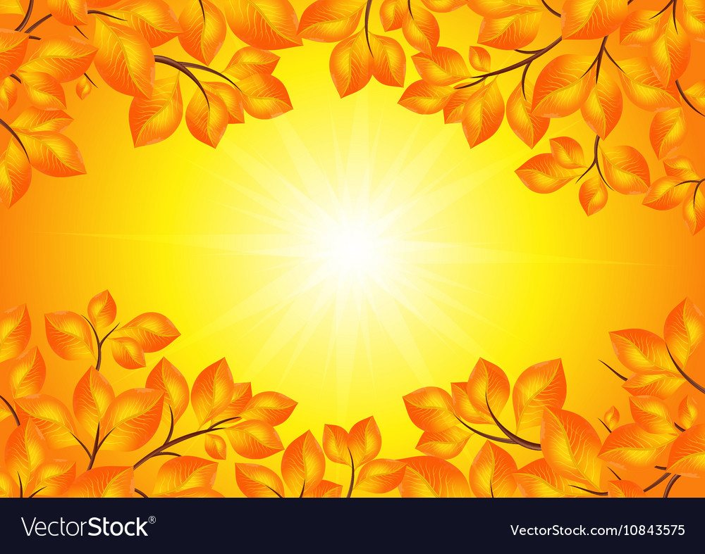 Yellow leaves frame vector image