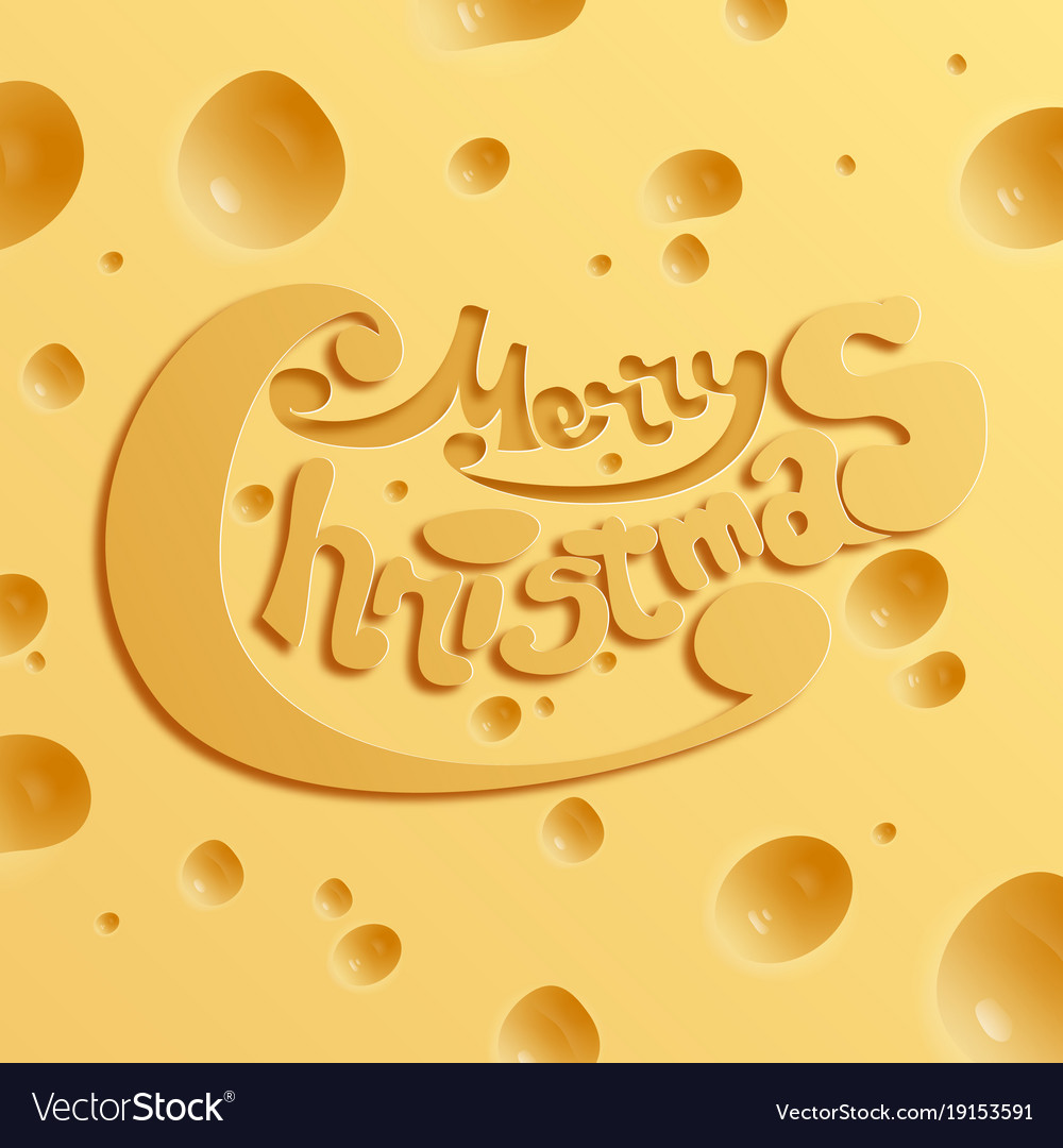 Festive holiday cheese concept vector image
