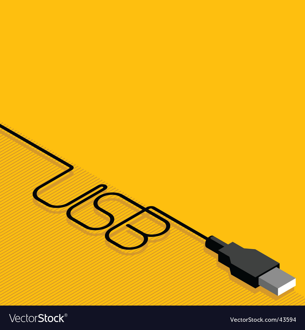 USB cable and plug vector image