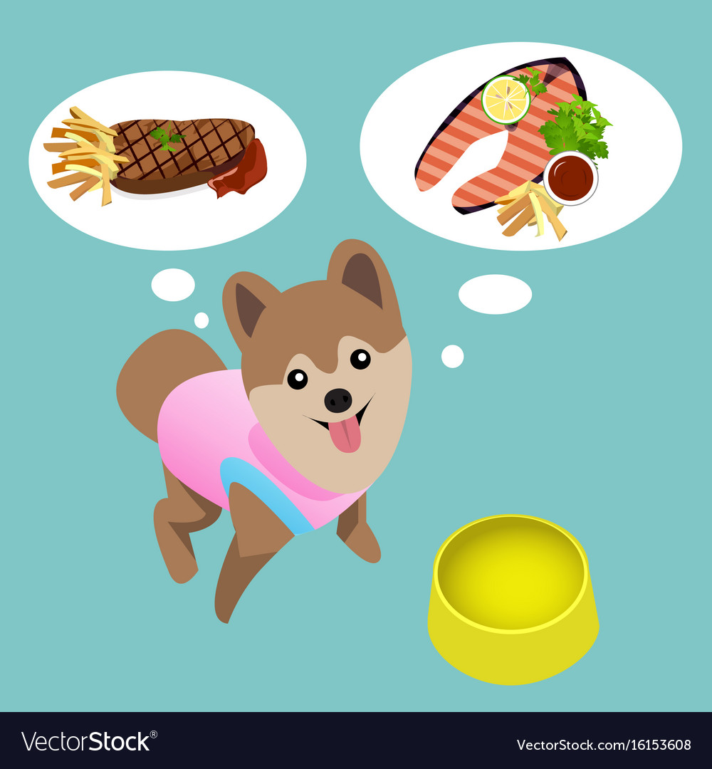 Pomeranian dog with empty bowl want to eat steak vector image