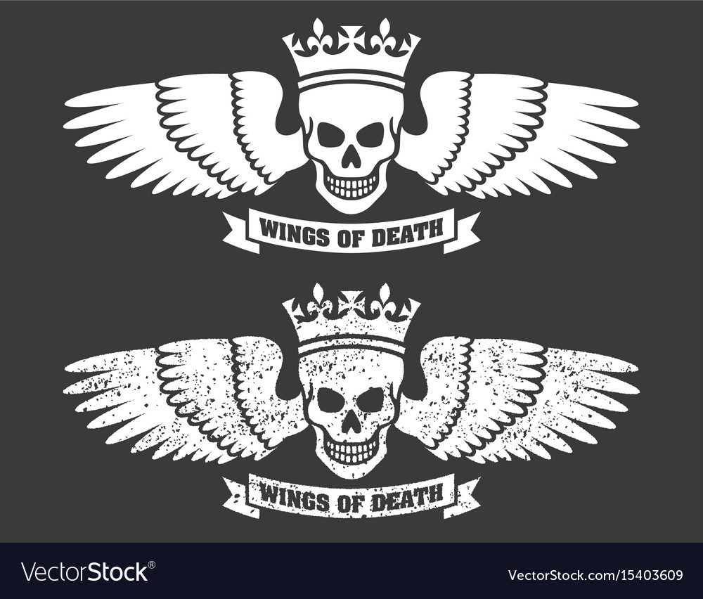 Winged skull design vector image