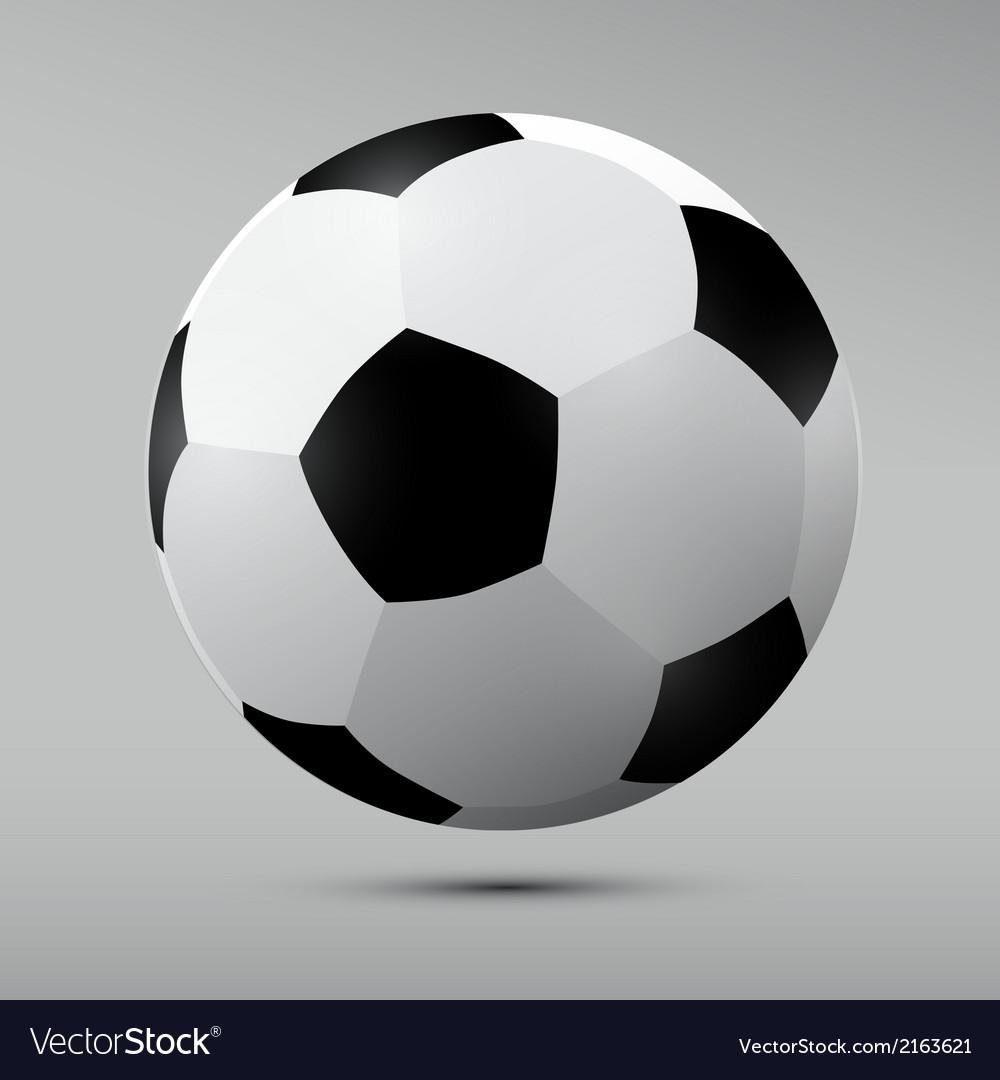 Football Black and White Ball vector image