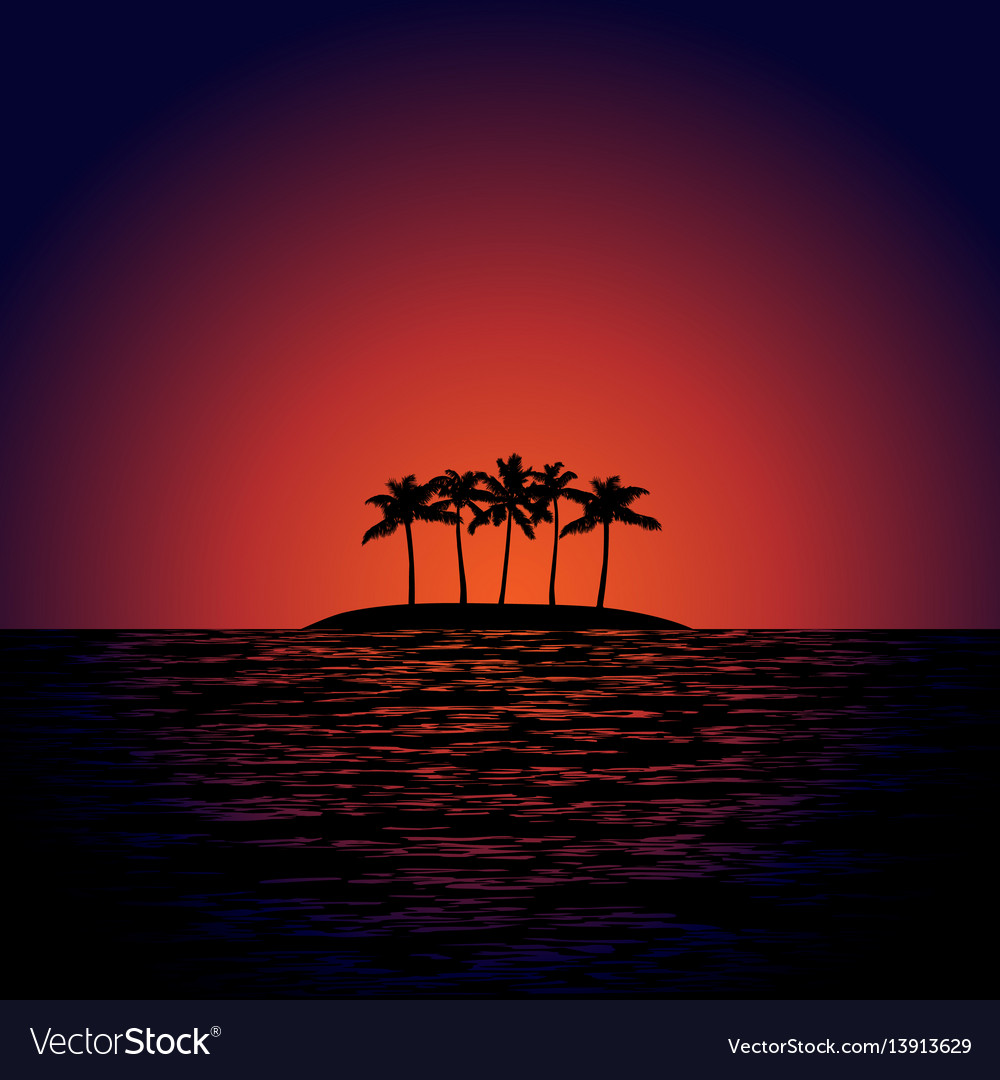 Tropical island at sunset vector image