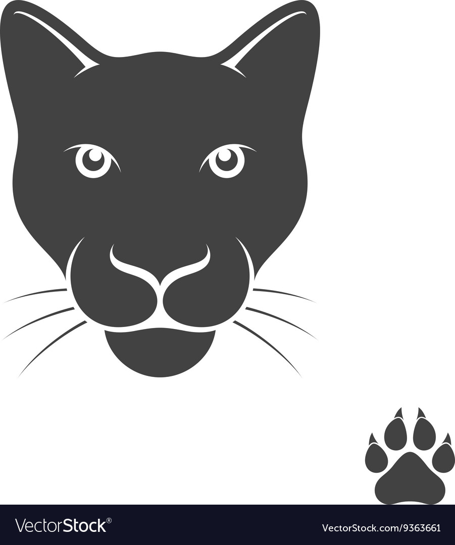 Panther with paw print vector image