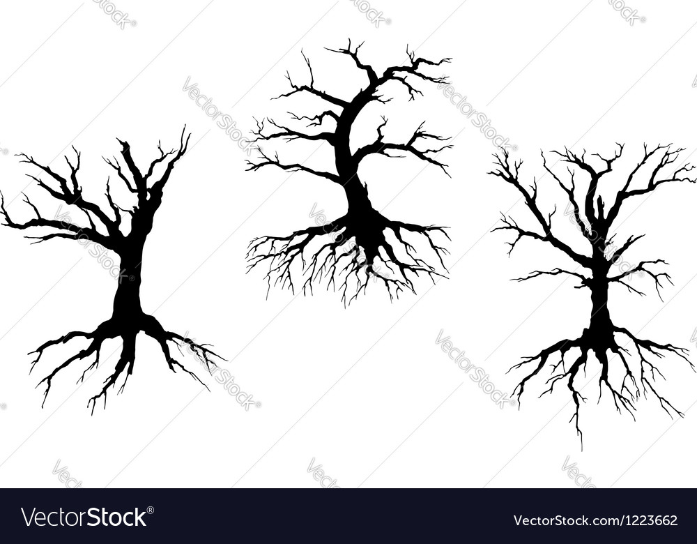 Dead trees with stem and roots vector image