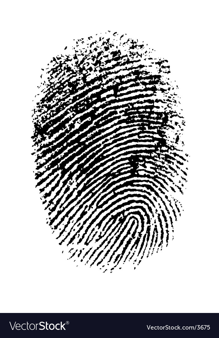 Thumbprint vector image