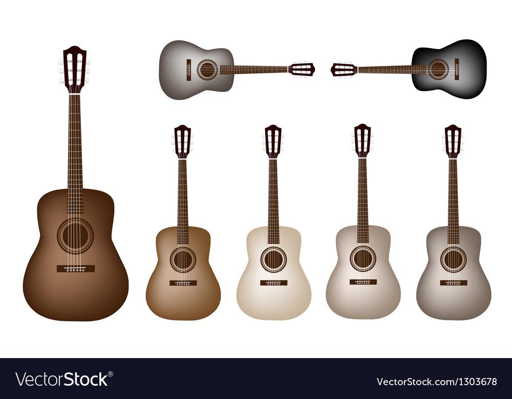 Beautiful Vintage Classical Guitars vector image