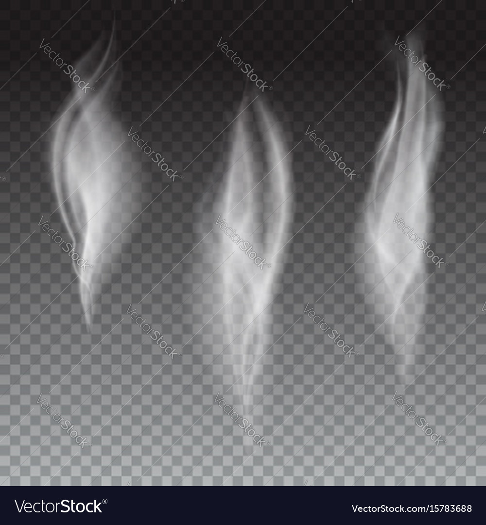 Set of delicate white cigarette smoke waves on vector image