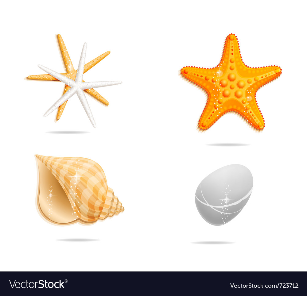 Sea orange sign set Vector Image
