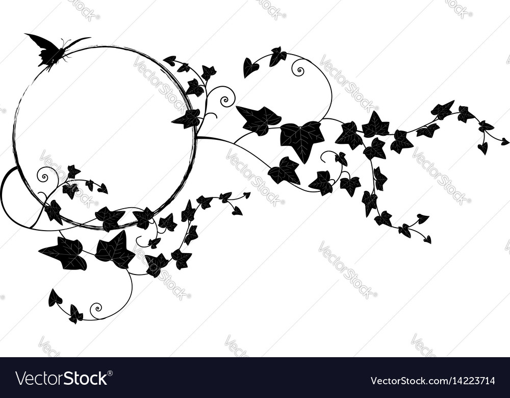 Valentine frame with butterfly and ivy vector image