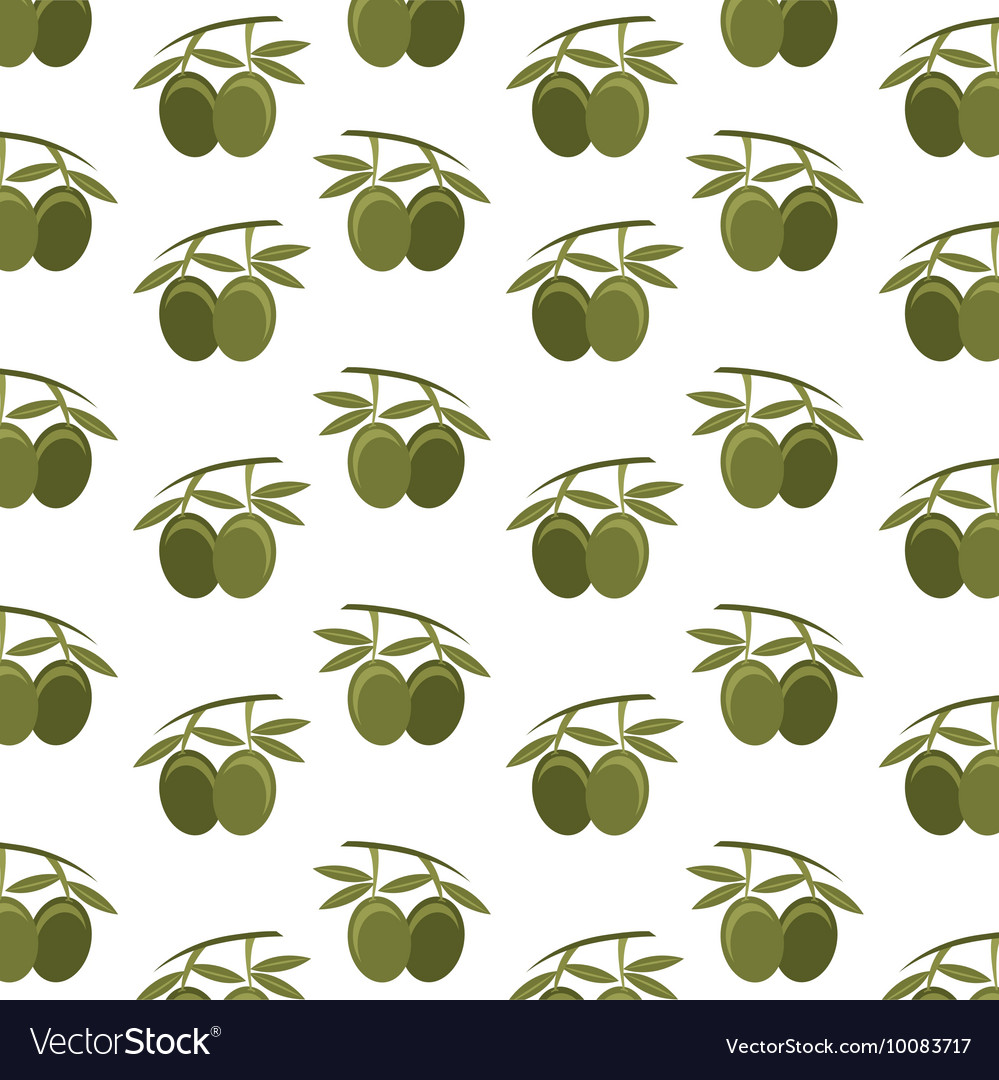 Olive seeds plant icon vector image