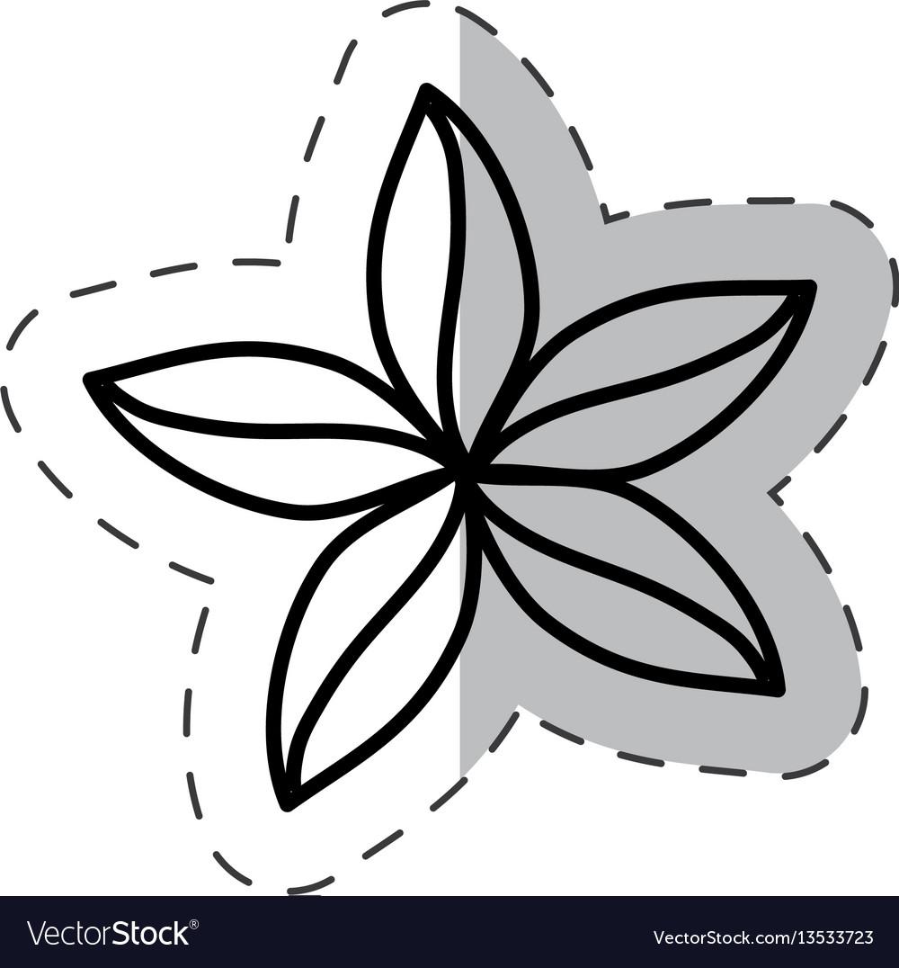 Flower natural ornate cut line vector image