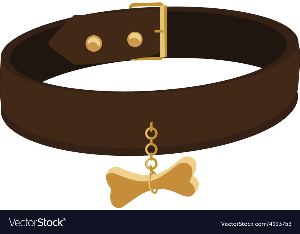 Dog collar vector image