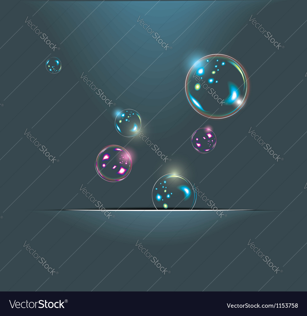 Soap bubbles isolated on black Extremely detailed Vector Image