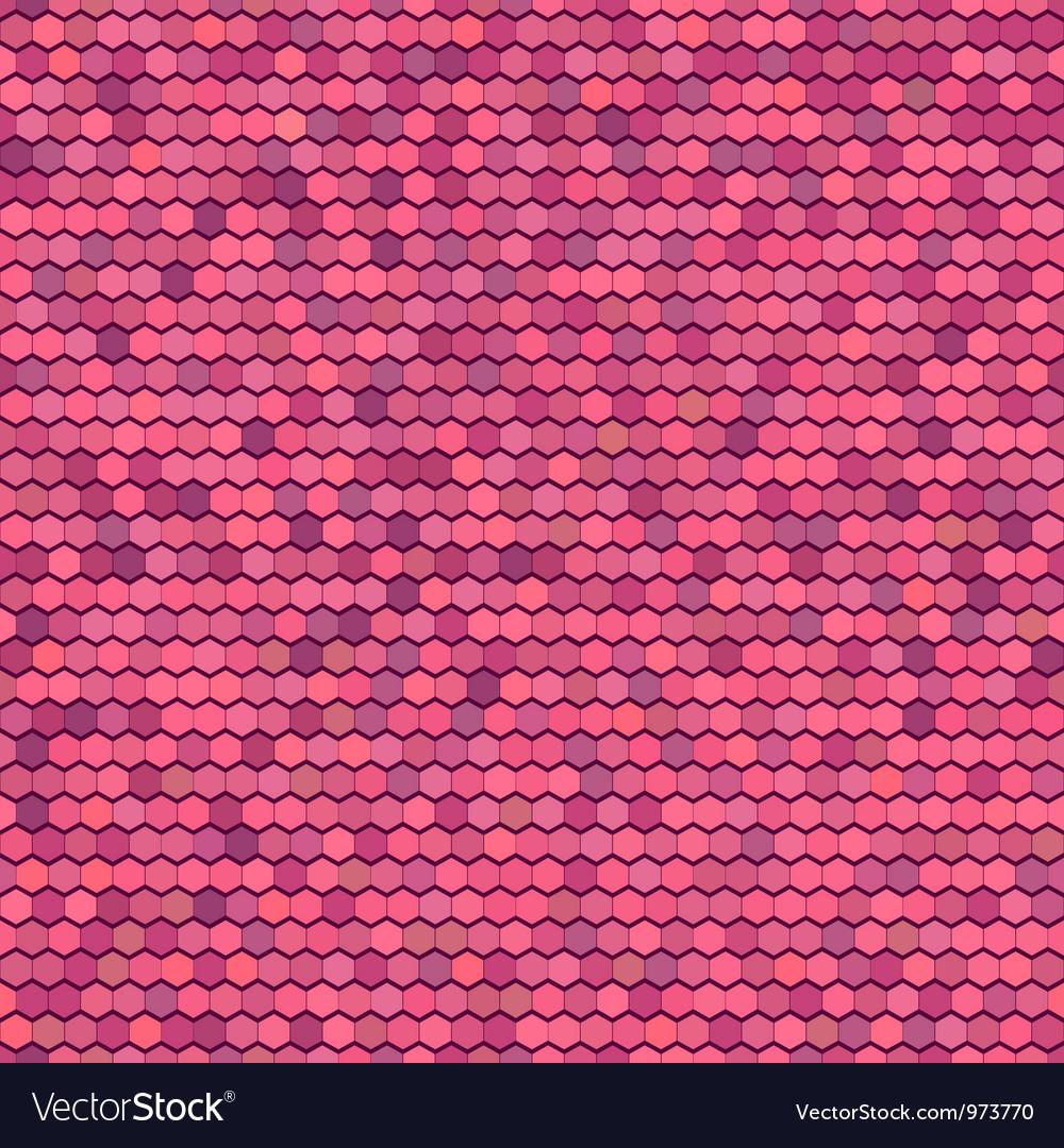 Color Comb Ornament vector image