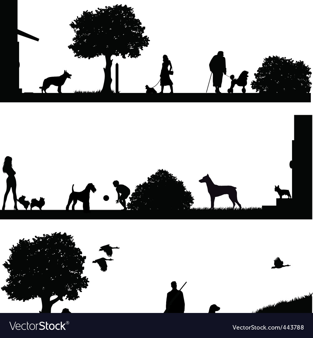 Life with dogs vector image