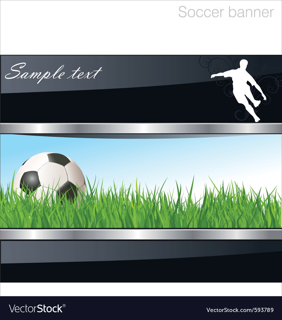 Soccer banner vector image