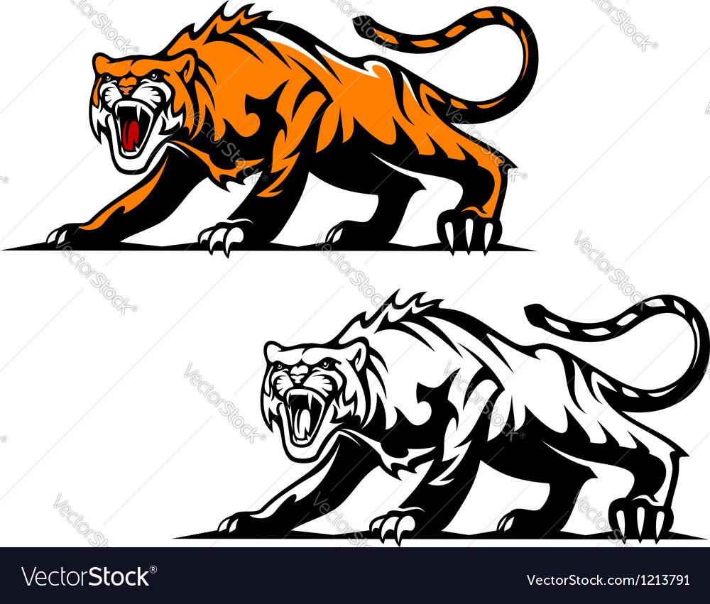 Aggressive tiger vector image
