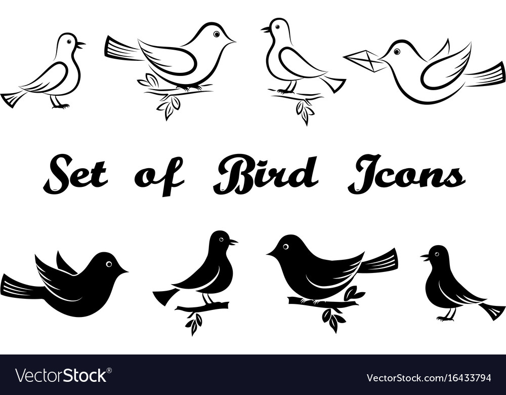 Set of bird icons vector image