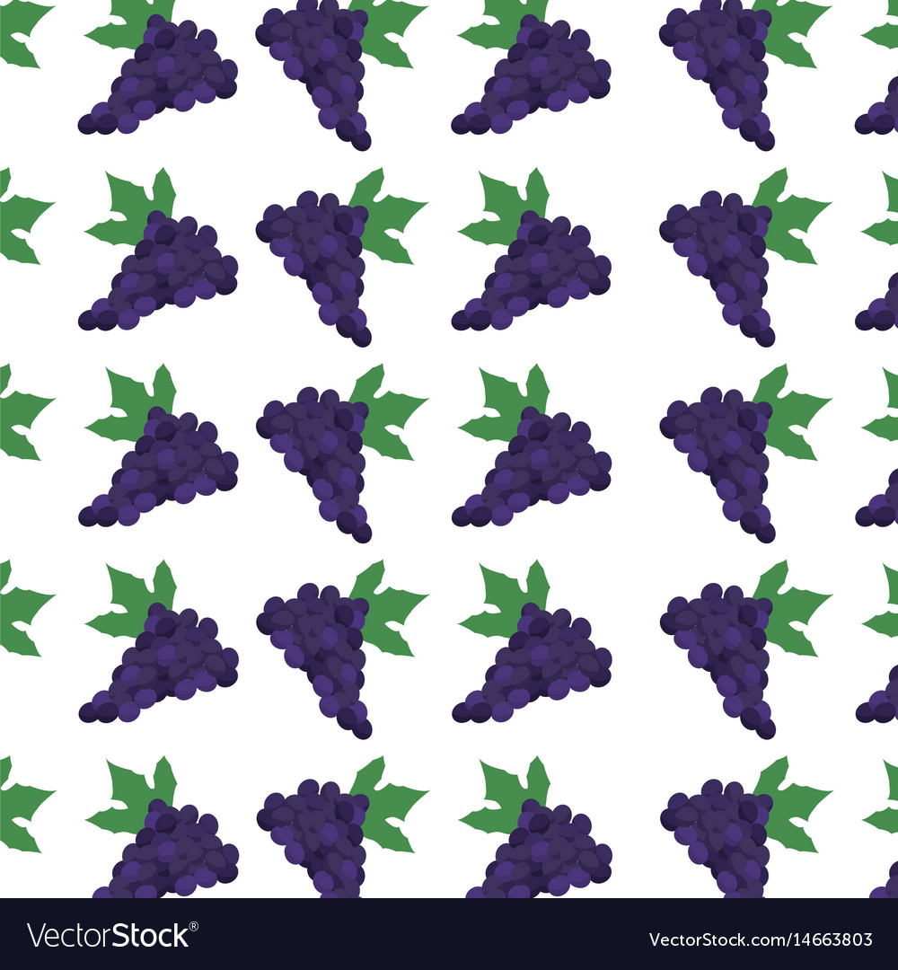 Grape fruit harvest fresh seamless pattern image vector image