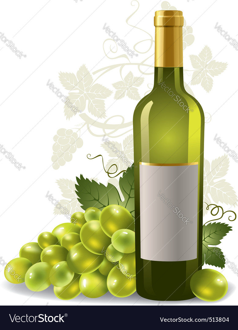 Wine bottle and grape vector image