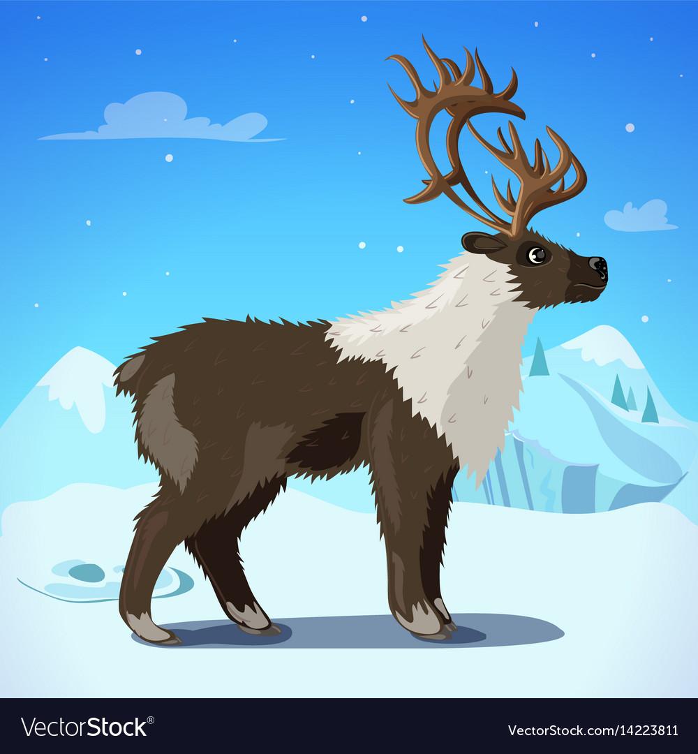 Cartoon colorful reindeer template vector image