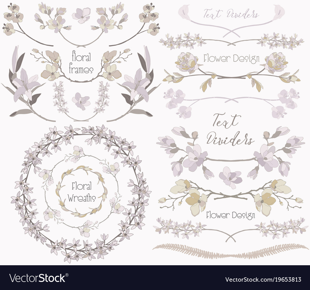 Big collection of floral design elements dividers vector image