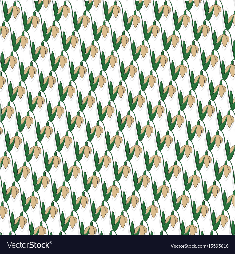 Beige snowdrops with leaves pattern eps 8 vector image