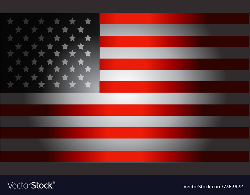 Black Flag American vector image