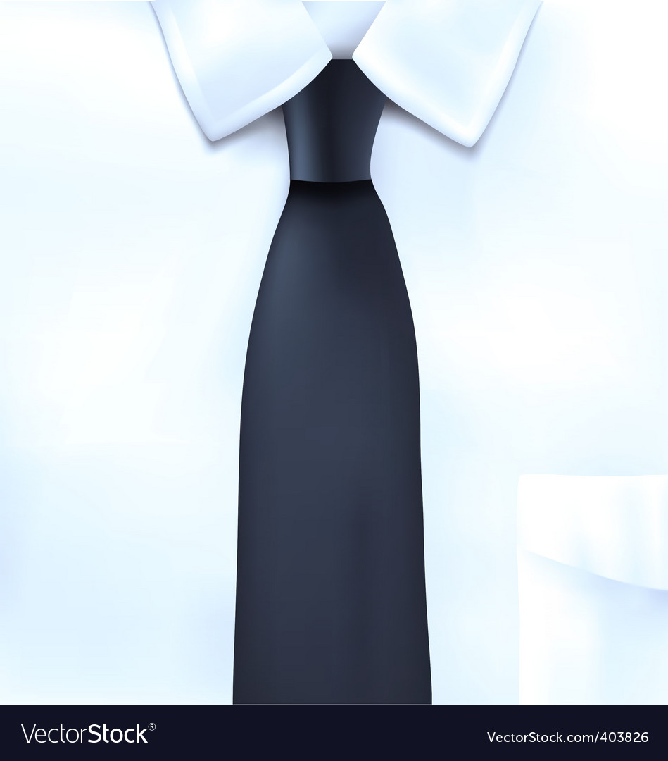 Shirt and tie illustration vector image