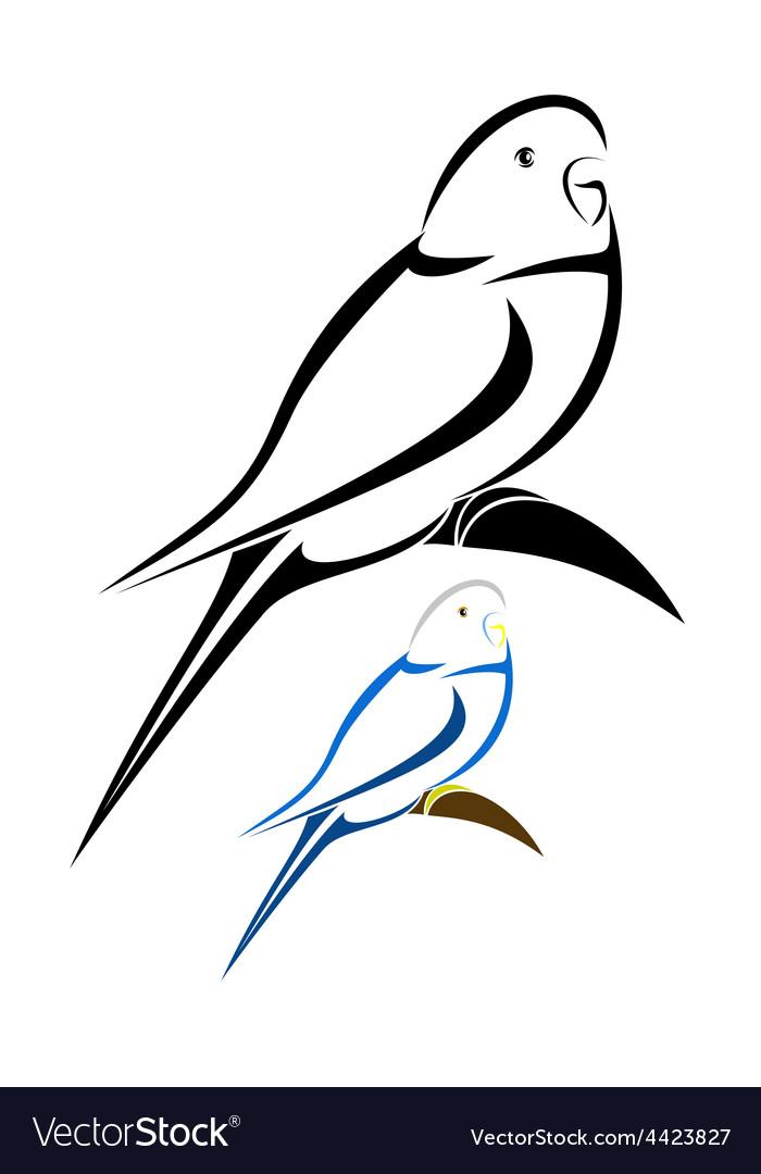 Parakeet vector image