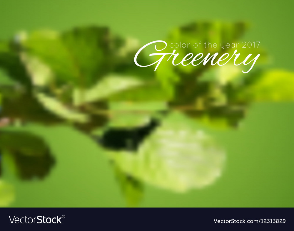 Trend color of the year 2017 Greenery background vector image