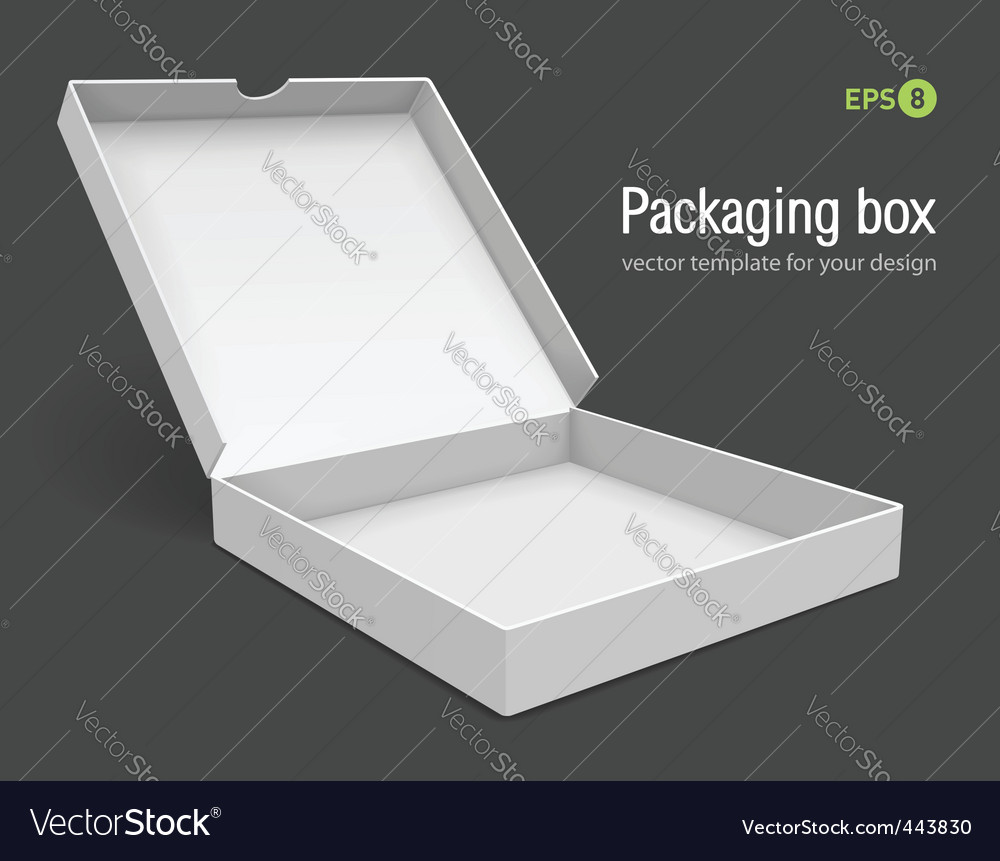 Open packing box for pizza vector image