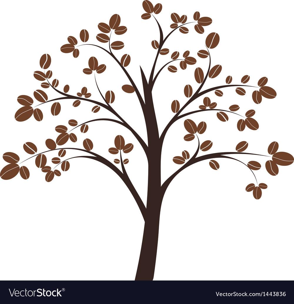 Coffee tree vector image
