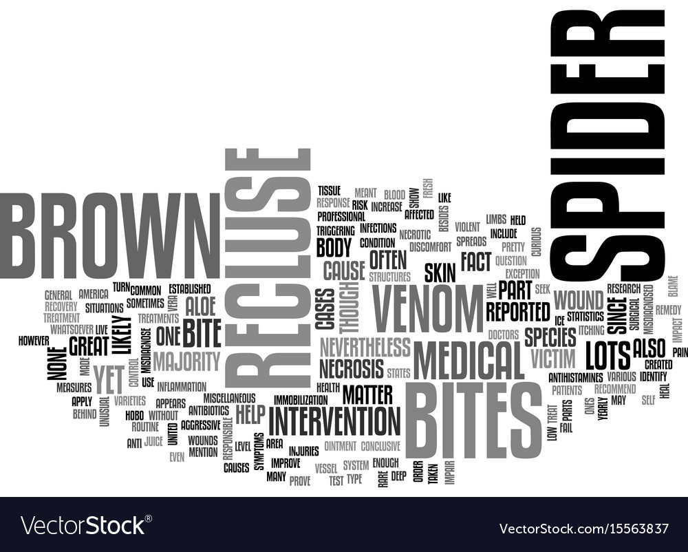 A bite from a brown recluse spider text word vector image