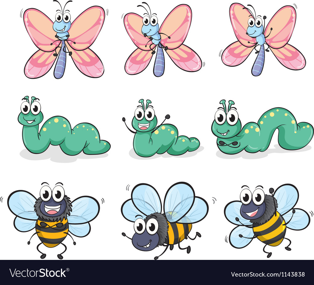 A caterpillar a butterfly and a bee vector image