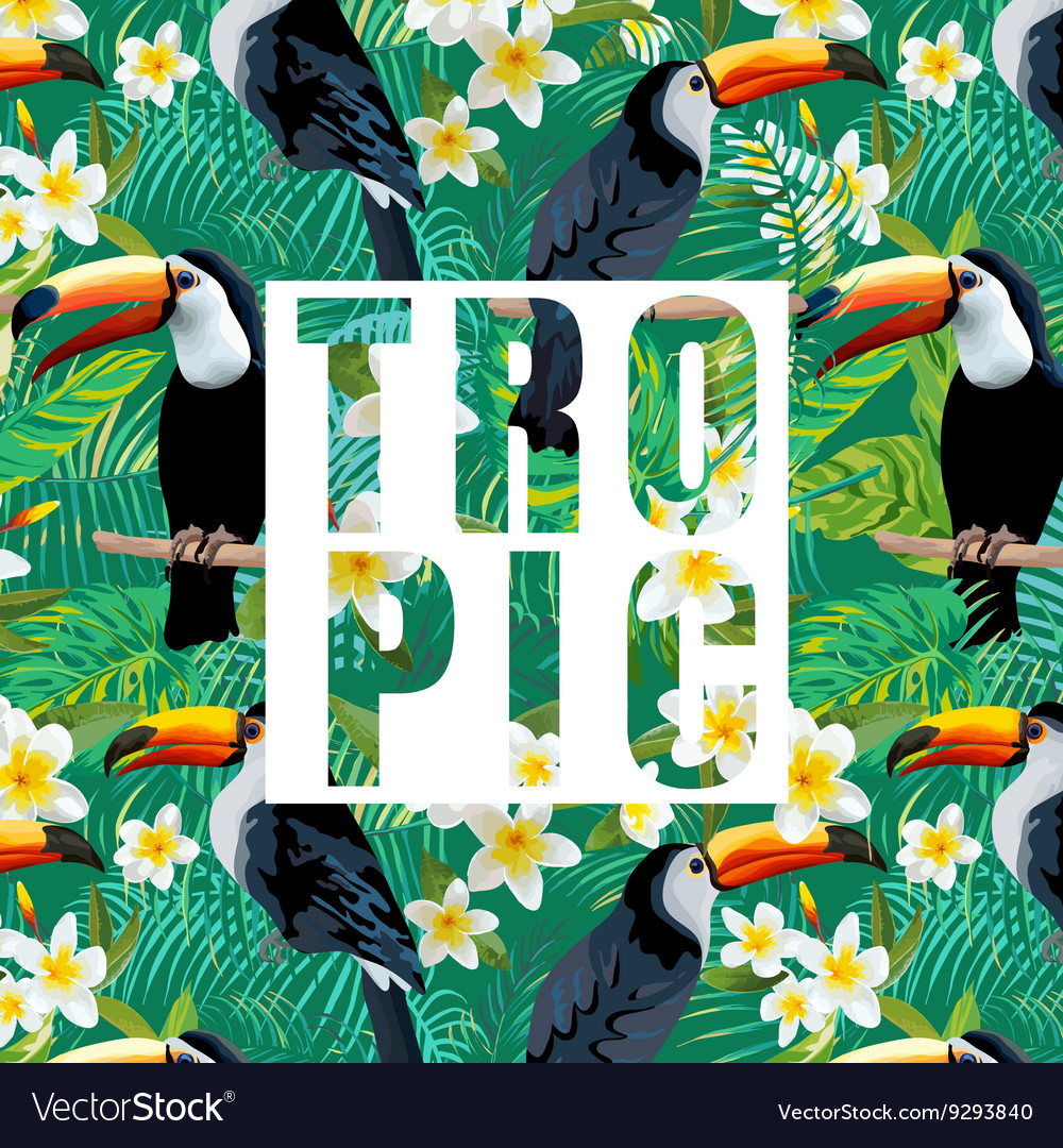 Tropical Flowers and Leaves Toucan Bird Background vector image