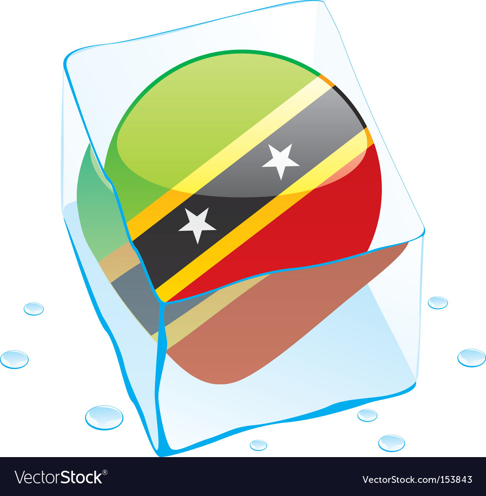 St Kitts and Nevis flag vector image