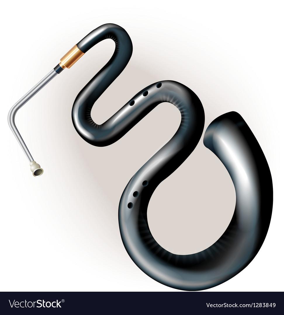 Ancient serpent vector image