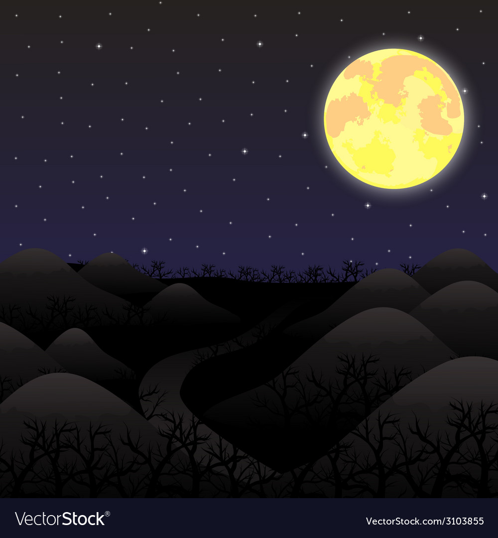 Night landscape in the full moon vector image