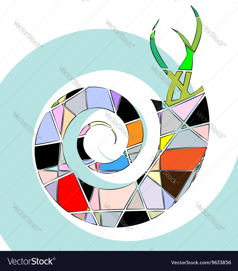 Abstract colored shell vector image