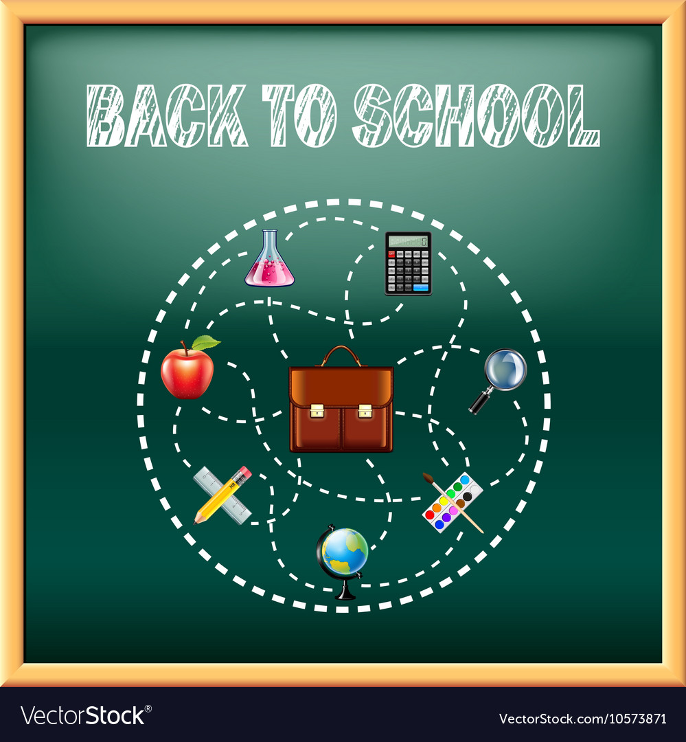 Back to school concept with tools on green vector image