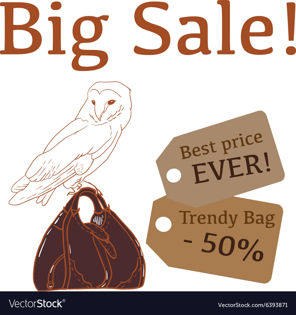 Big Sale with cute owl trendy bag vector image