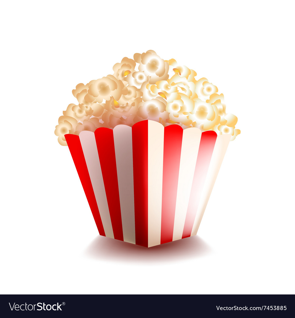 Popcorn isolated on white vector image